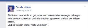 Wenn Asylsuchende nicht auf der Wiese sitzen dürfen - Rassistische Vorwürfe auf facebook. Screenshot: a.i.d.a.